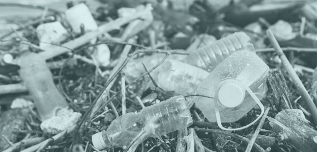 Is design the new single–use plastic?